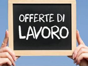 Offerte di lavoro dai centri per l'impiego della Regione Lazio